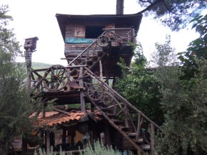 Staying in a Tree House in Olympos